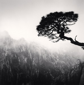 Huangshan Mountains, Study 48, Anhui, Chine, 2010.jpg