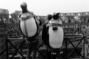 Zwei Touristen tragen Pinguine und Kameras auf ihrem Rücken..jpg