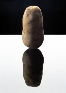 potato, 2003 © anuschka blommers en niels schumm.jpg