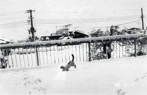 Chiro in the Snow, 1991.jpg