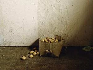 Pieter_Hugo_La maison des Besters, Vermaaklikheid, 2013.jpg