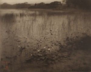 06. The Lily Pond_Eickemeyer.jpg