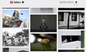 LFI Gallery_1.jpeg