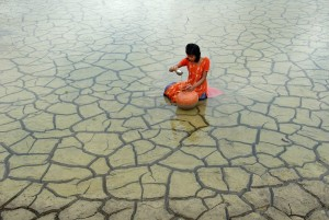 Biswas_Prasanta_Rainwater-collection.jpg
