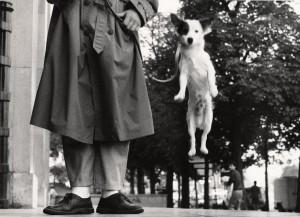 Paris, France, 1989 ©Elliott Erwitt:Magnum Photos.jpg