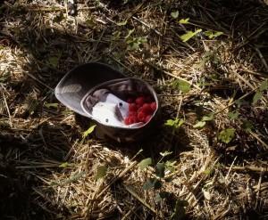 Some_Berries.jpg