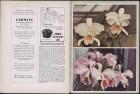 LFIA-3-1954_en_page_023.jpg