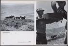 LFIA-6-1968_de_page_008.jpg