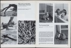 LFIA-2-1964_en_page_015.jpg