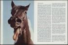 LFIA-6-1973_de_page_015.jpg