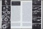 LFIA-2-1976_de_page_018.jpg