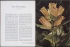 LFIA-3-1961_en_page_011.jpg