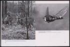 LFIA-3-1956_de_page_017.jpg