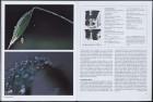 LFIA-4-1979_de_page_014.jpg