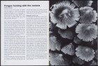 LFIA-3-1976_en_page_020.jpg