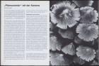 LFIA-3-1976_de_page_022.jpg