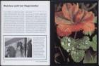 LFIA-6-1976_de_page_015.jpg