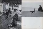 LFIA-6-1963_en_page_009.jpg