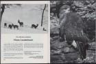 LFIA-6-1971_en_page_007.jpg