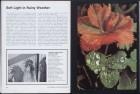 LFIA-6-1976_en_page_013.jpg