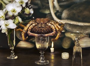 Crab_Vera Mercer.JPG