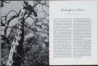 LFIA-4-1952_de_page_007.jpg