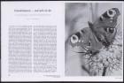 LFIA-5-1951_de_page_006.jpg