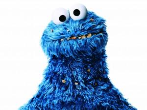 4_©Humanity_Rafael Pulido_Cookie Monster_2015.jpg