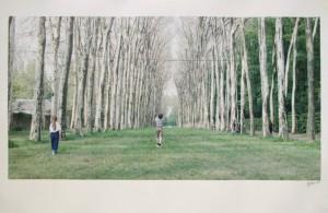 Ghirri_Versailles.jpg