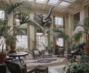 Catherine_Leutenegger_Kodak_City_The_George_Eastman_House_Conservatory_2012.jpg