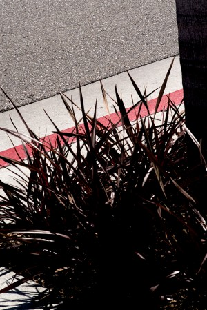 Vertical-Horizon_Sidewalk-Red.jpg