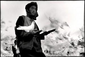 Afghanistan 11.01.jpeg