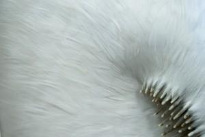 SISSURE BREACH - detail Photo JP Bland .jpg