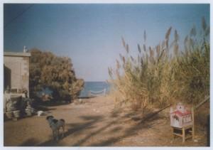 Inga Kerber Cliche of a Landscape House near the Beach.jpg