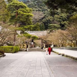Temple, Tokyo, 2016 © Marion Dubier-Clark.jpg