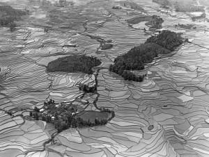 70005_Reisfelder in Süd-Hunan-twk-Tiefen.jpeg