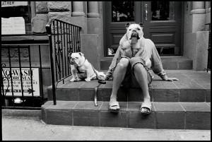 © Elliott Erwitt_MAGNUM Photos USA_New York City. 2000.jpeg