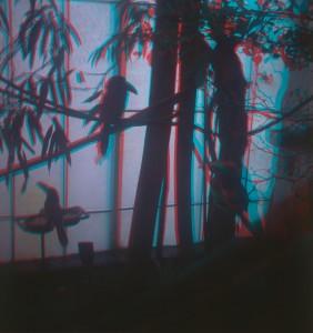 5_Eliso_Tsintsabadze_Pavel FilkovDark_Birds_Little Commentary-2500.jpg