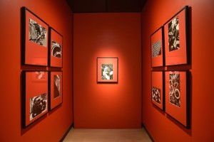 F11 Foto Museum - GF (Shot from Alexander Rodchenko Exhibition).JPG