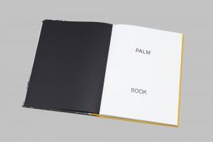 Palm_Book_Title.jpg