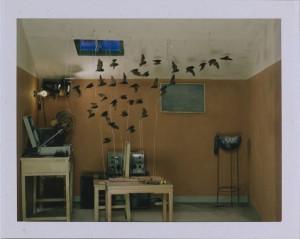 MKG_Polaroid_ChenWei_Everlasting-Radio-Wave-Test-#5_web.jpg