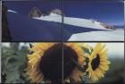 LFIA-8-1979_en_page_011.jpg