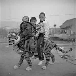 © Yan Ming B.jpg