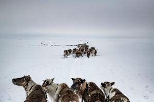 3_Yamal-Peninsula,-Russia,-April-2018.-©-Yuri-Kozyrev-–-NOOR-for-Fondation-Carmignac.jpg