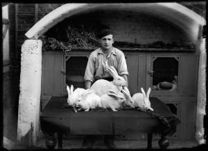 2_Elevage de lapins - Kasimir ZGORECKI -1920-1930 © adagp CRP Hauts-de-France.jpeg