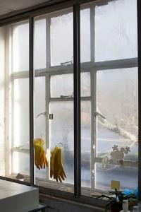 01_Wet Room, Gloves_web.jpg