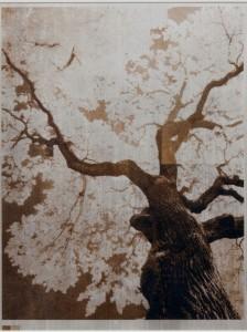 2_Norio Takasugi - 2-11-BR  26.7x35cm.jpg