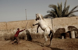 Moises Saman_Taming a Horse_2004_web.jpg