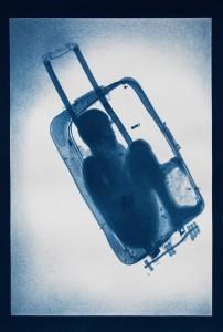 1_1st Prize 2020 - X-Ray Vision vs Invisibility © Noelle Mason.jpeg