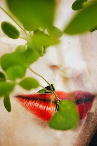 4 _ LES MARQUES © Elsa LEYDIER 1 2 .jpg